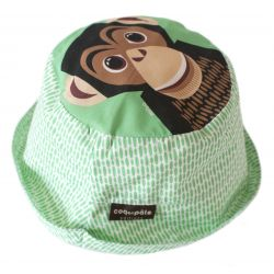 Bob Chimpanzé